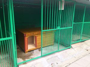 Naše psí bouda v útulku - Valašské Meziříčí