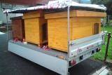 psí boudy připravené k odvozu